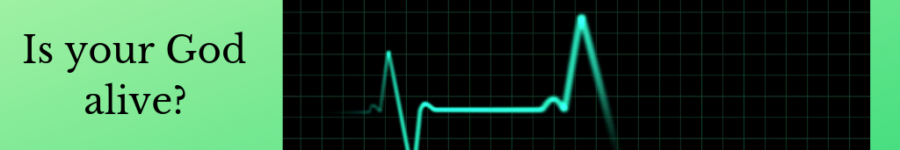 Picture of EKG going static
