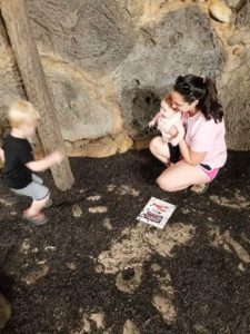My wife following the Enneagram Type 7 Parent tip: Having fun with our children at the Zoo's dig site.