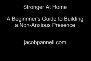 A picture of text: Stronger at Home A Beginner's Guide to Building a Non-Anxious Presence jacobpannll.com